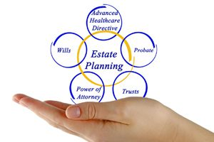 Avoca Beach Law wills and estate planning